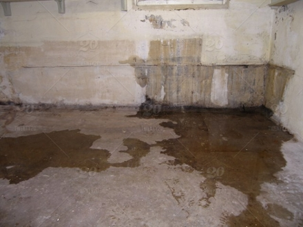 Basement Leak